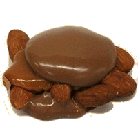 Milk Almond Turtle